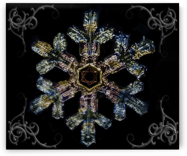 Coloured Snowflake1 by Light Seeker