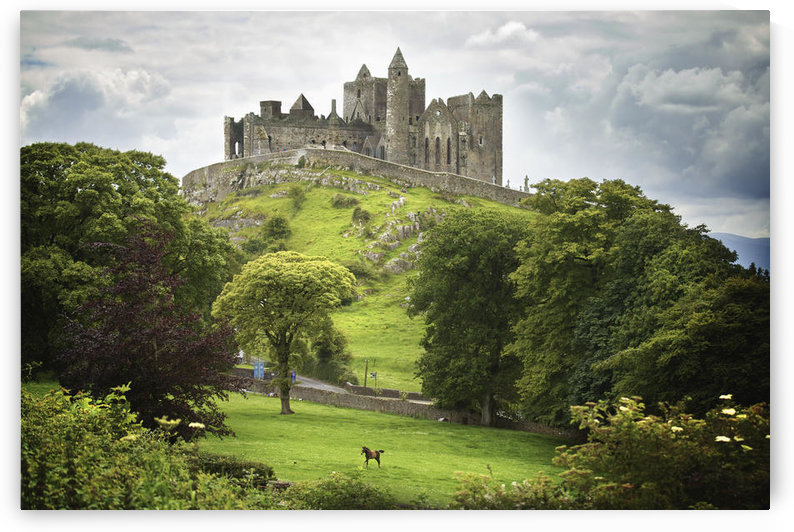 Rock Of Cashel; Cashel County Tipperary Ireland by PacificStock