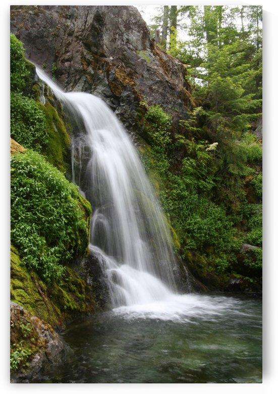 Sullivan Falls in the Opal Creek Wilderness, Oregon by Craig Nowell Stott