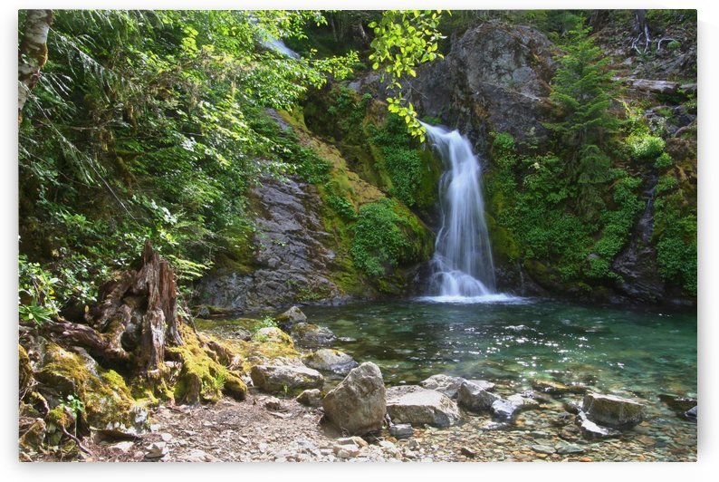Lower portion of Sullivan Falls, Opal Creek Wilderness, Oregon by Craig Nowell Stott