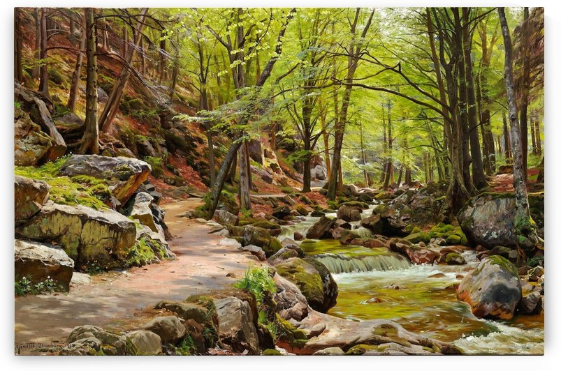 A walk on the path in the forest by Peter Mork Monsted