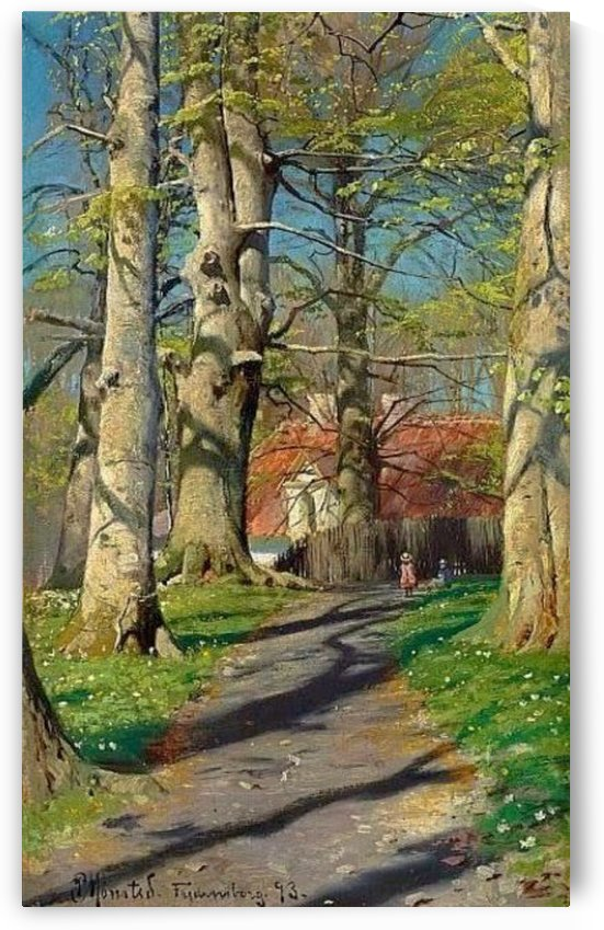A walk in the forest during a sunny day by Peter Mork Monsted