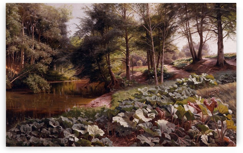 The path on the rivers edge by Peter Mork Monsted