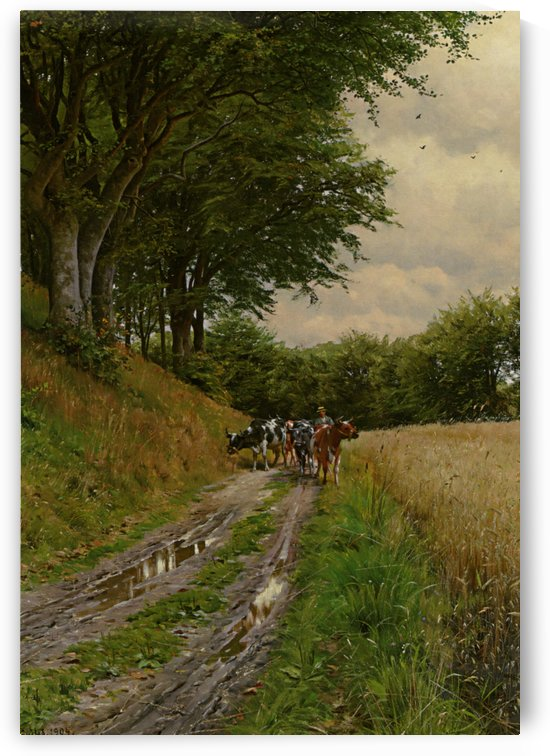 Walking through fields with cows by Peter Mork Monsted
