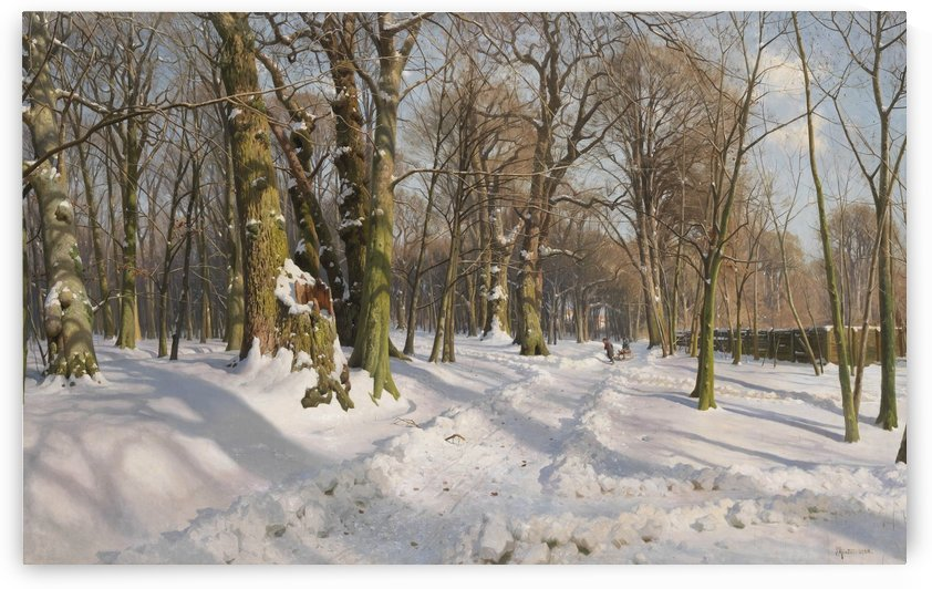Covered woodland path in sunlight by Peter Mork Monsted