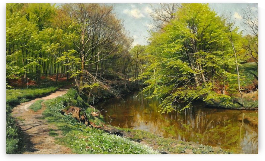 Phineas and anemones along a stream in a clear day by Peter Mork Monsted