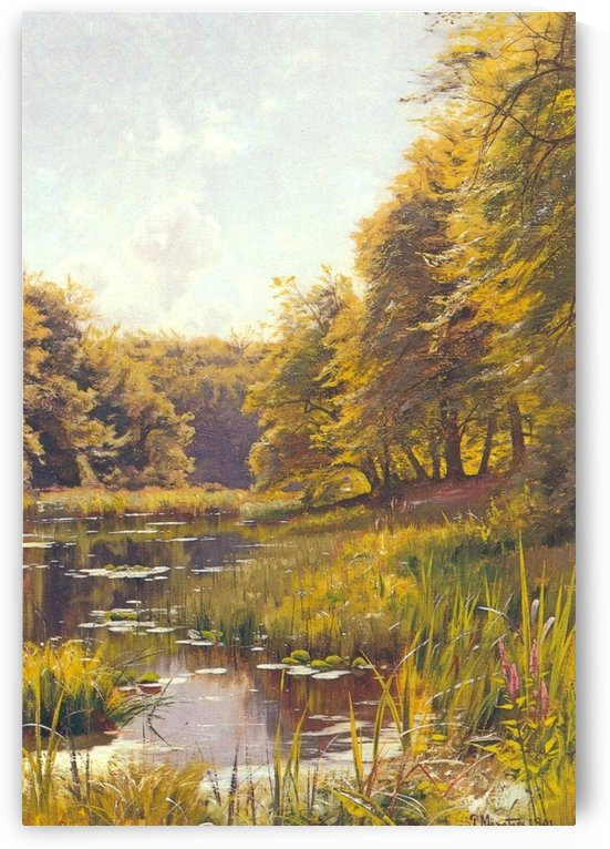 Sunny day along the stream by Peter Mork Monsted