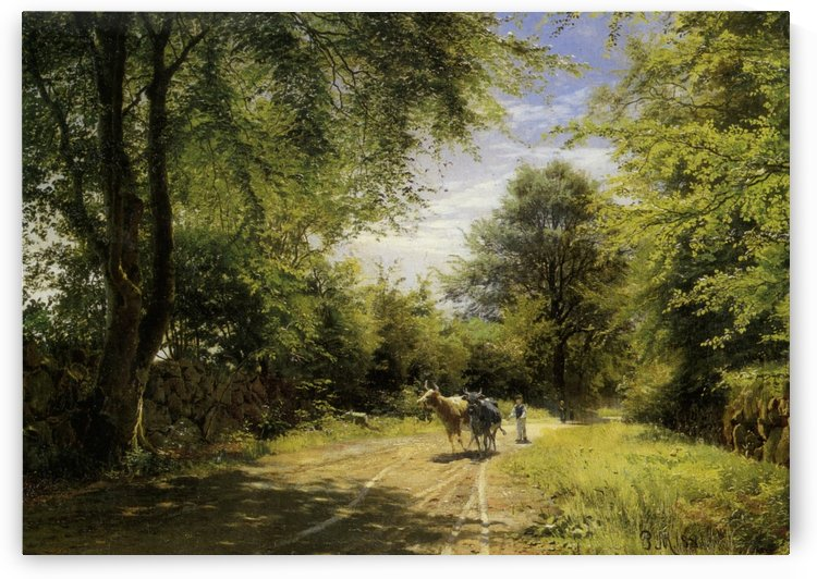 A couple of cows taken to walk in the forest by Peter Mork Monsted