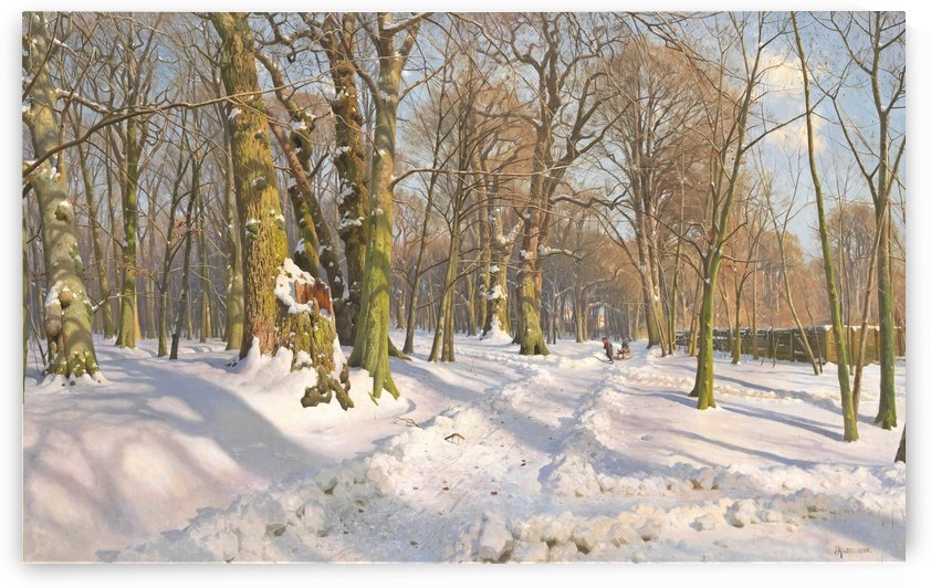 Snow covered forest path in sunlight by Peter Mork Monsted