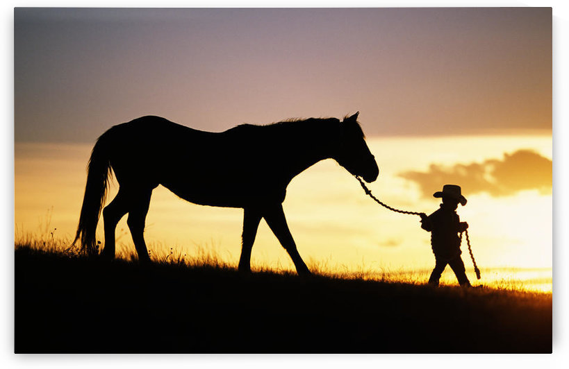 Hawaii, Silhouette Of Boy Leading Horse Along Grassy Hillside At Sunset. by PacificStock