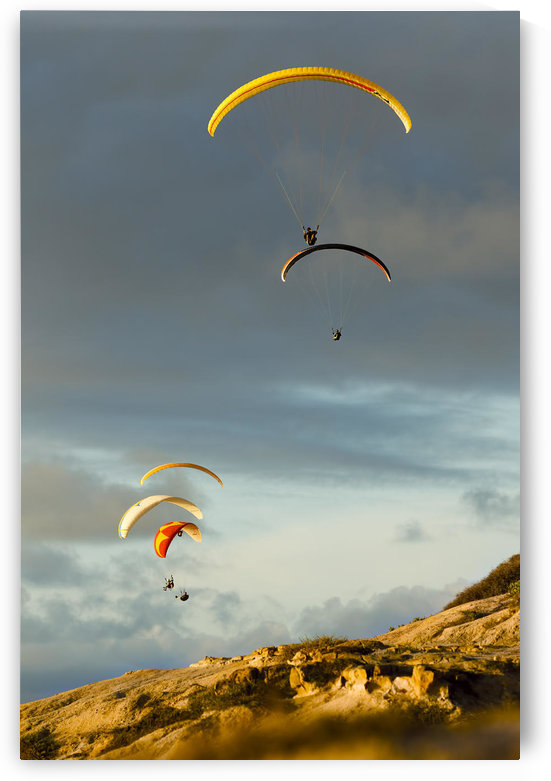 USA, California, Paragliders Flying Over Coast; La Jolla by PacificStock