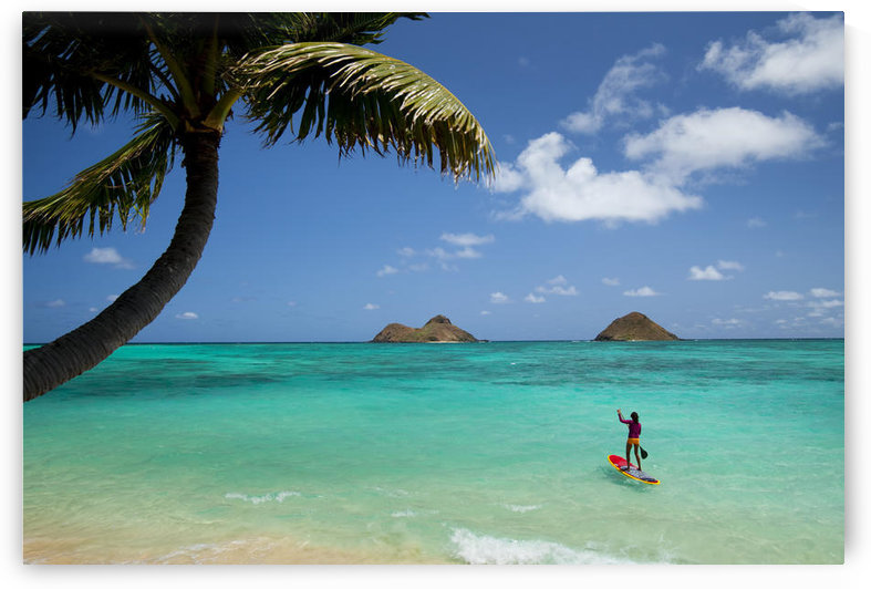 USA, Hawaii Islands, Oahu, Female Stand Up Paddler On Her Way To Mokulua Islands; Lanikai Beach by PacificStock
