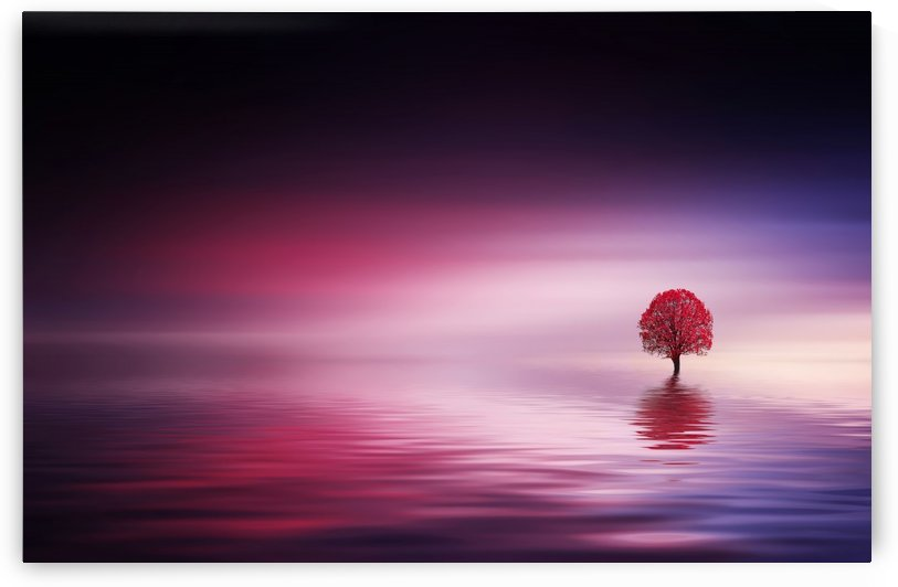 Magical tree with red leaves in the lake by Bess Hamiti