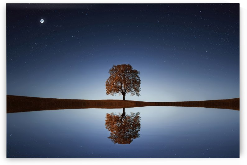 Reflection tre by Bess Hamiti