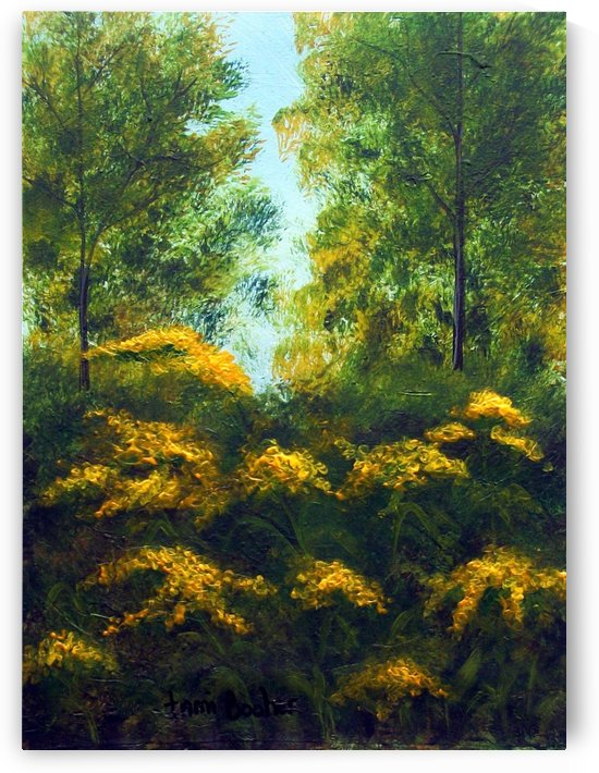 Goldenrod by Tami Booher Appalachian Nature Painter