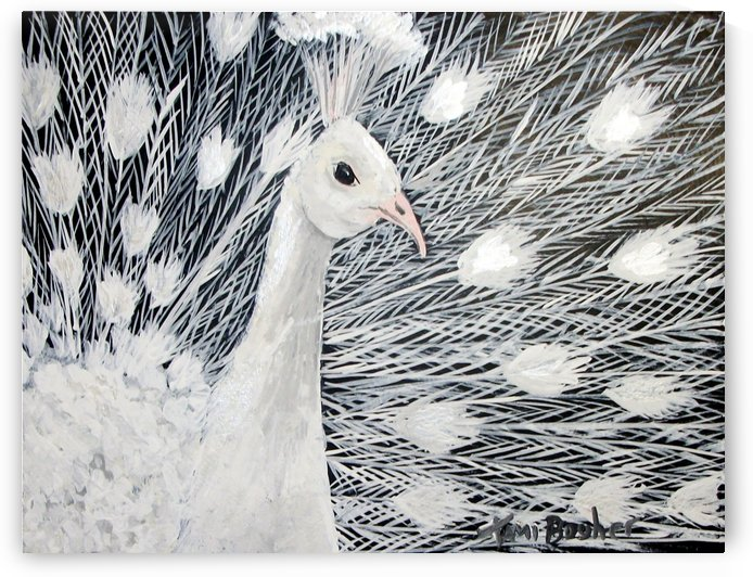peacock in white by Tami Booher Appalachian Nature Painter