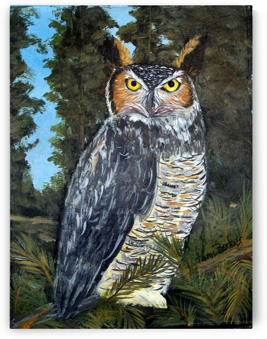 Owl by Tami Booher Appalachian Nature Painter