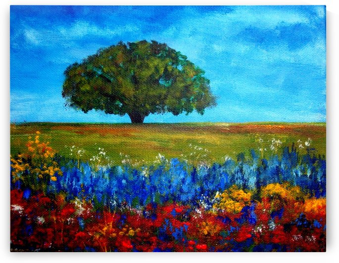 field of flowers by Tami Booher Appalachian Nature Painter
