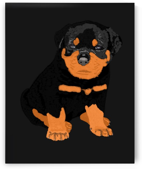 Rottweiler puppy by Pukis