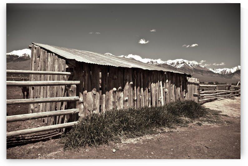 ©Lou Freeman Wild West Cowboy Art 1020 20 by Lou Freeman