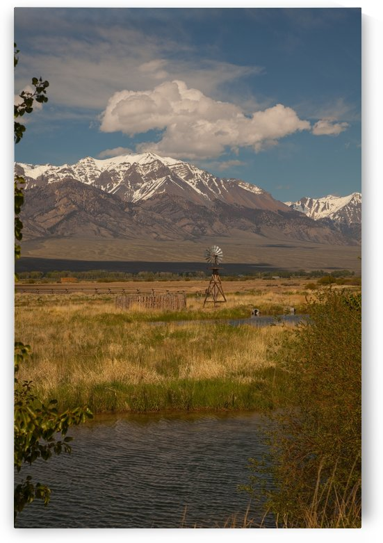 ©Lou Freeman Wild West Cowboy Art, 1020 34 by Lou Freeman
