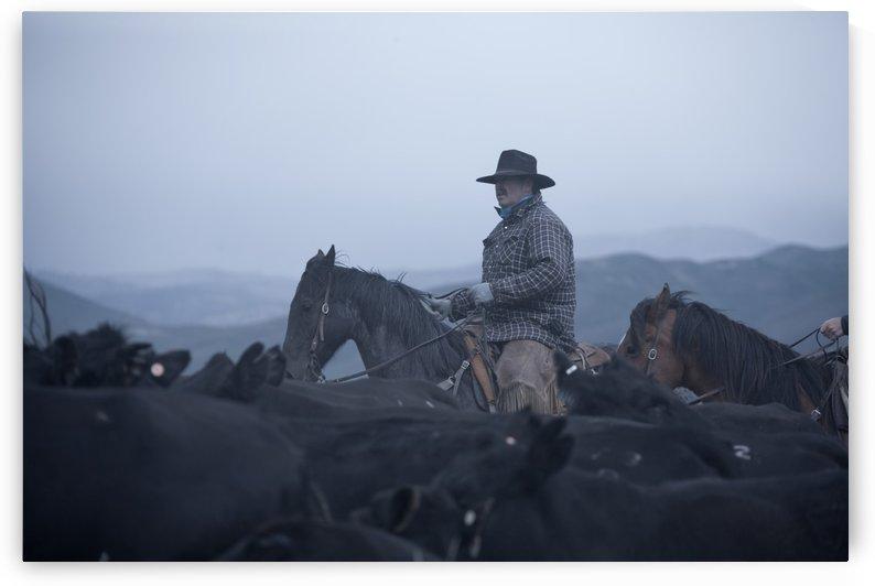 ©Lou Freeman Wild West Cowboy  1020 17 by Lou Freeman
