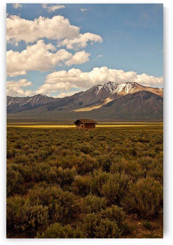 ©Lou Freeman  West Landscape Art 1020 94 by Lou Freeman