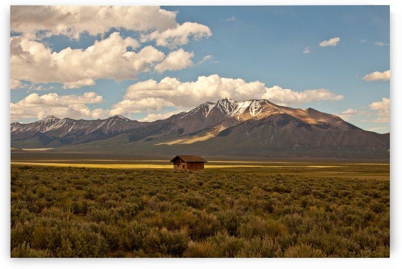 ©Lou Freeman  West Landscape, Art 1020 92 by Lou Freeman
