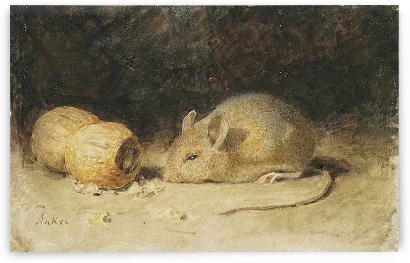 A mouse with a peanut by Anker Albert
