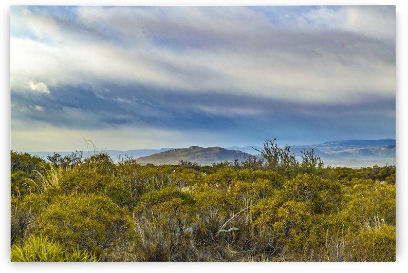 Patagonian Lanscape Scene, Santa Cruz, Argentina by Daniel Ferreia Leites Ciccarino