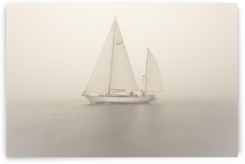 ©LouFreeman Coastal Maine Sea Scape 1020 56 by Lou Freeman