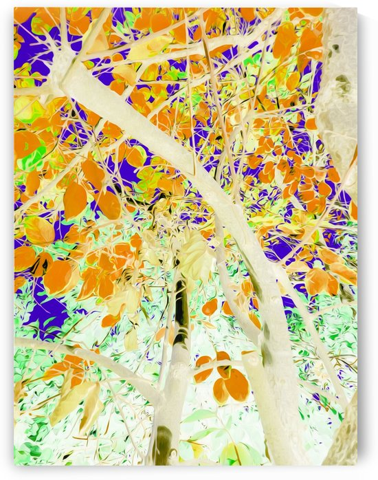 drawing tree with orange leaves and purple background by TimmyLA