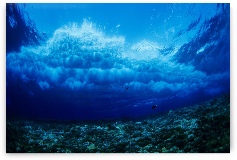 Hawaii, Underwater View Of Wave Breaking Over Coral Reef. by PacificStock