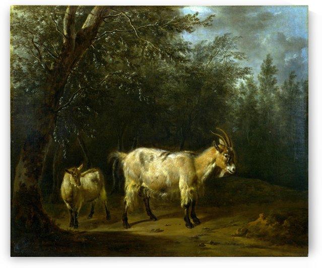 Geit en geitje by Adriaen van de Velde
