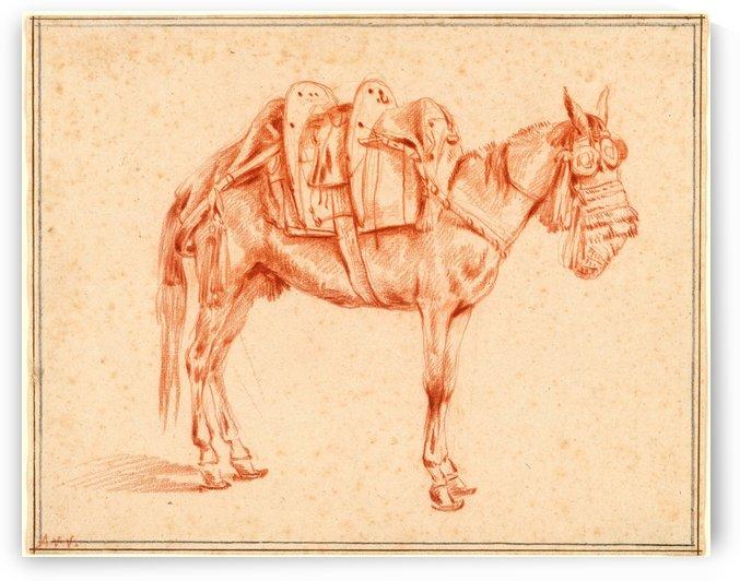 Study of a mule by Adriaen van de Velde