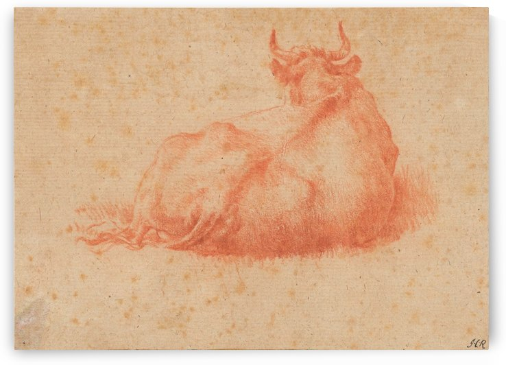 The back of a cow by Adriaen van de Velde
