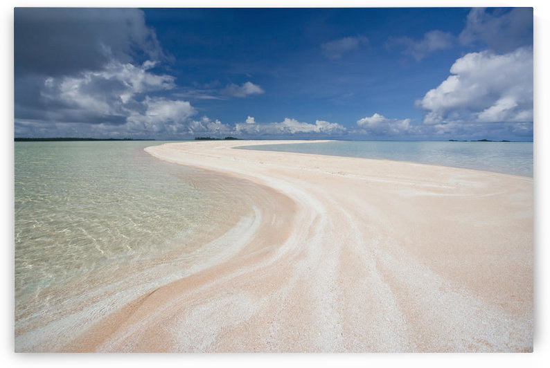 French Polynesia, Tahiti, Rangiroa, Pink Sands Beach. by PacificStock