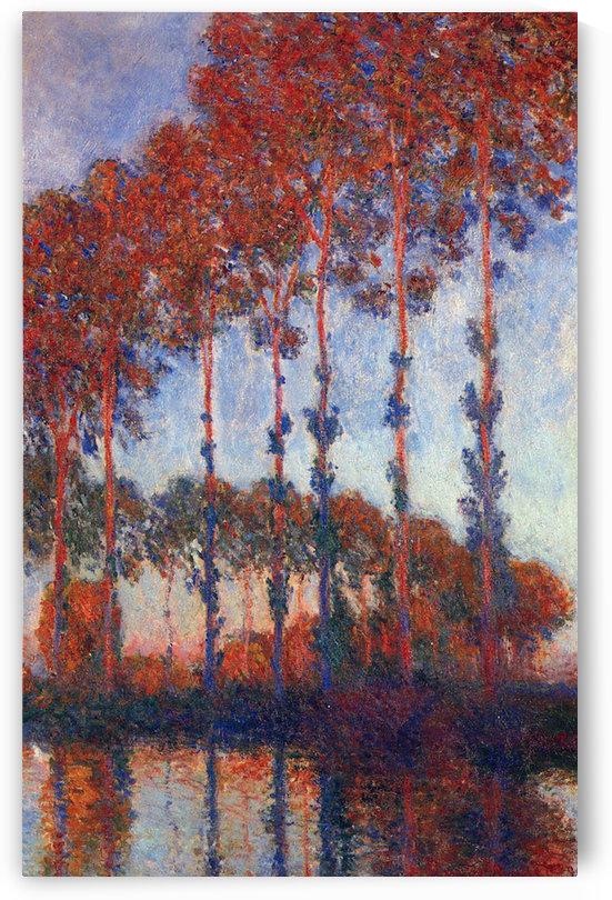 Poplars by Monet by Monet