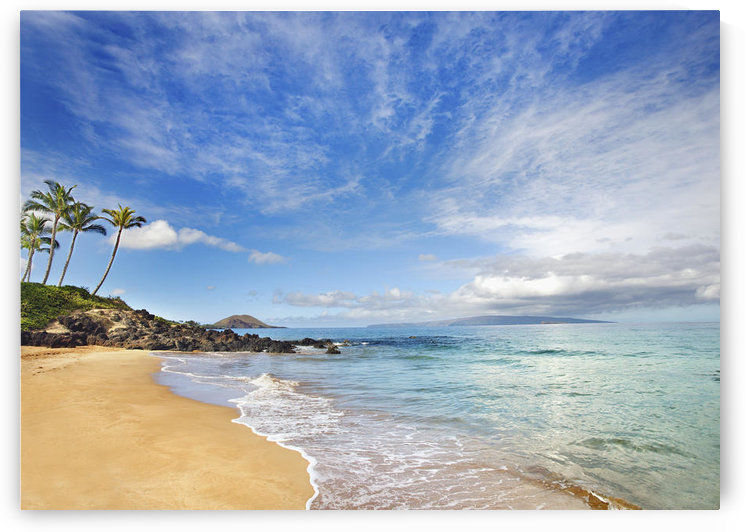 Hawaii, Maui, Makena, Secret Beach, Turquoise Ocean With Palm Trees And Sandy Beach. by PacificStock