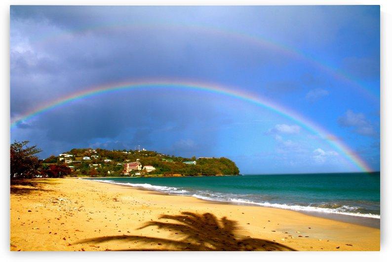Rainbow by Joanna Devaux Guillaume