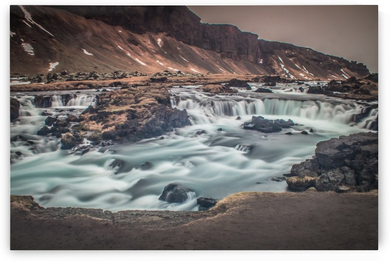 Bumbling brook by Danielle Farrell