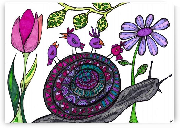 Snail Trail by Susan Watson