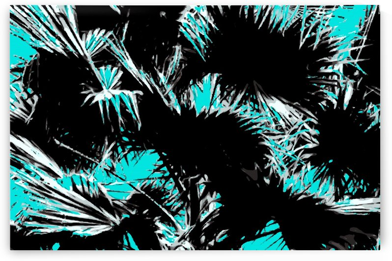 palm leaf abstract with blue background by TimmyLA