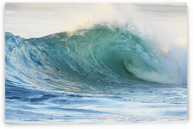 Hawaii, Oahu, Beautiful Wave Breaking. by PacificStock
