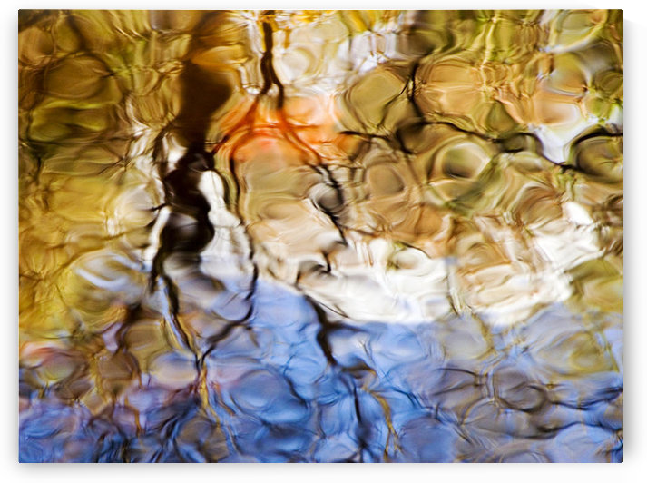 Elementals, Massachusetts, Seekonk, Caratunk Wildlife Refuge, Colorful Glassy Reflections On Water. by PacificStock