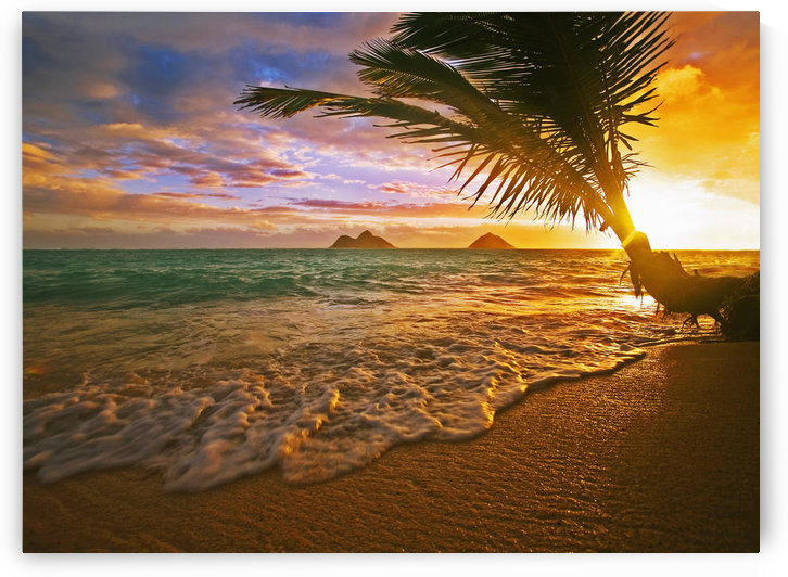 USA, Hawaii, Lanikai Beach at sunrise; Oahu by PacificStock