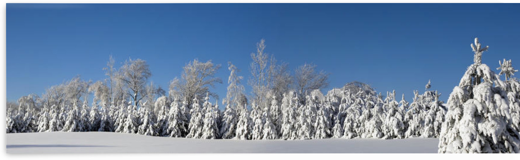 Canadian Winter Panorama; Foster Quebec Canada by PacificStock
