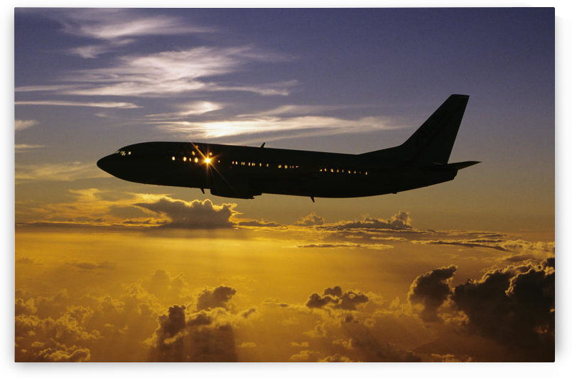 USA, Silhouette of airplane in sunset sky; Hawaii by PacificStock