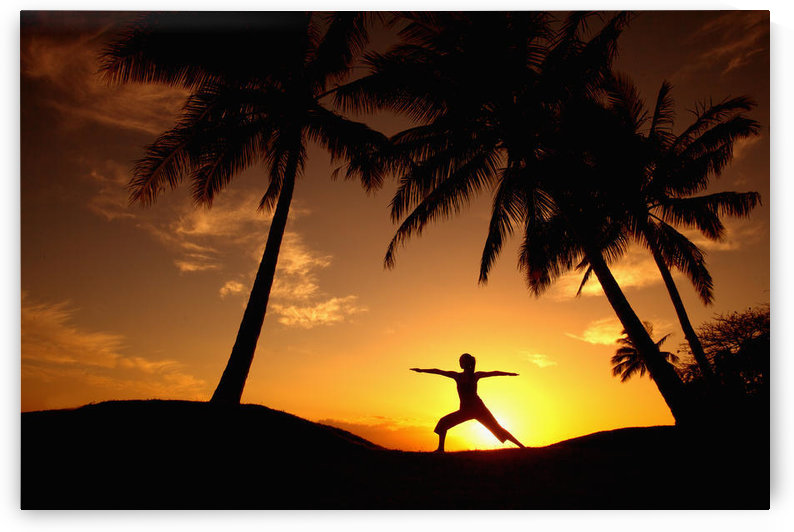 Hawaii, Maui, Olowalu, Woman Doing Yoga At Sunset Under Palm Tree. by PacificStock