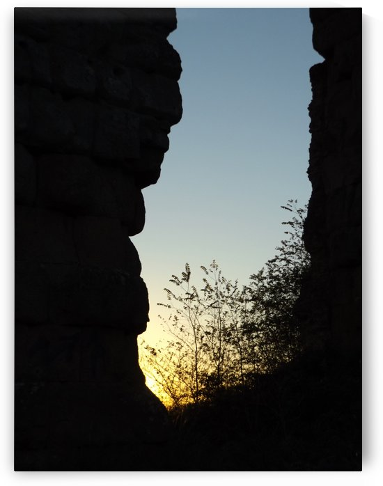 Landscape photography, Italian Sunshine - Sunset on Roman aqueduct ruins - The Roman and italian landscape, Rome, Italy by Alessandro Nesci